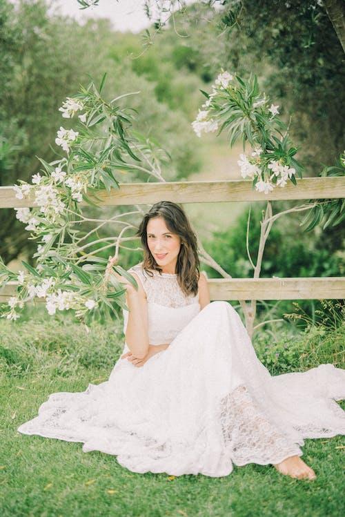 bakmak, Beyaz çiçekler, çiçekli bitki, çim içeren Ücretsiz stok fotoğraf