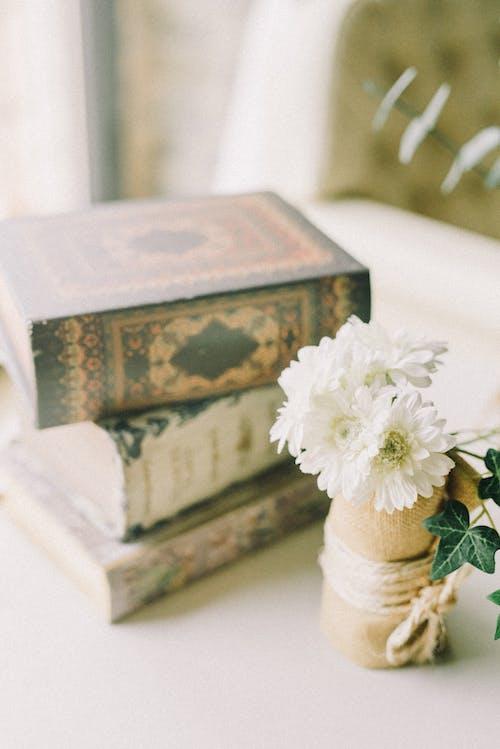 Gratis stockfoto met bloemen, boeken, boekenstapel, decor
