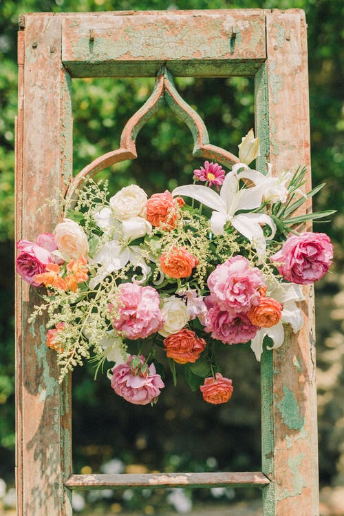 Photo of Decorative Flowers