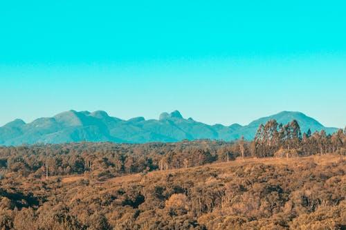Ingyenes stockfotó óriási hegyek témában