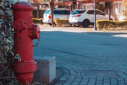 Ingyenes stockfotó hidrante témában
