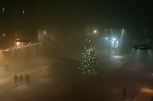 Immagine gratuita di luci, nebbia