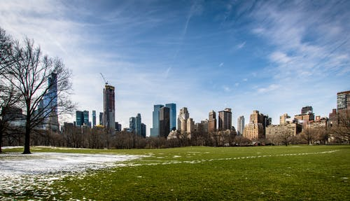 Free stock photo of blue sky, central park, new york