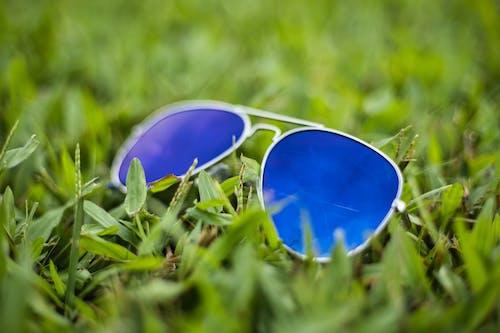 Free stock photo of aviator, blue, colorful sunglasses, shades