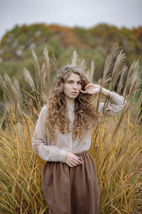Photos gratuites de attirant, beauté, blé
