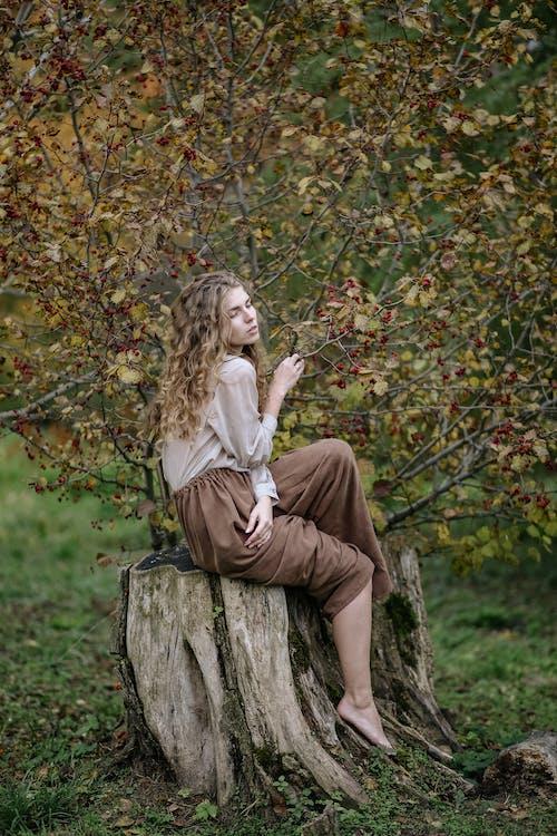 Imagine de stoc gratuită din buturugă, ciot de copac, cu ochii inchisi