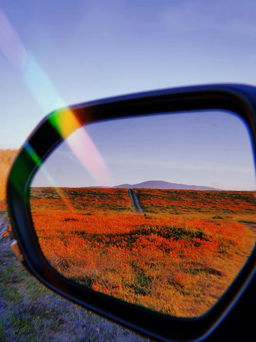 Brown Grass Field View From A Side Mirror Of Vehicle