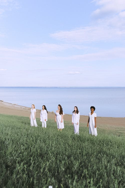 Бесплатное стоковое фото с близость, вода, группа, дневное время