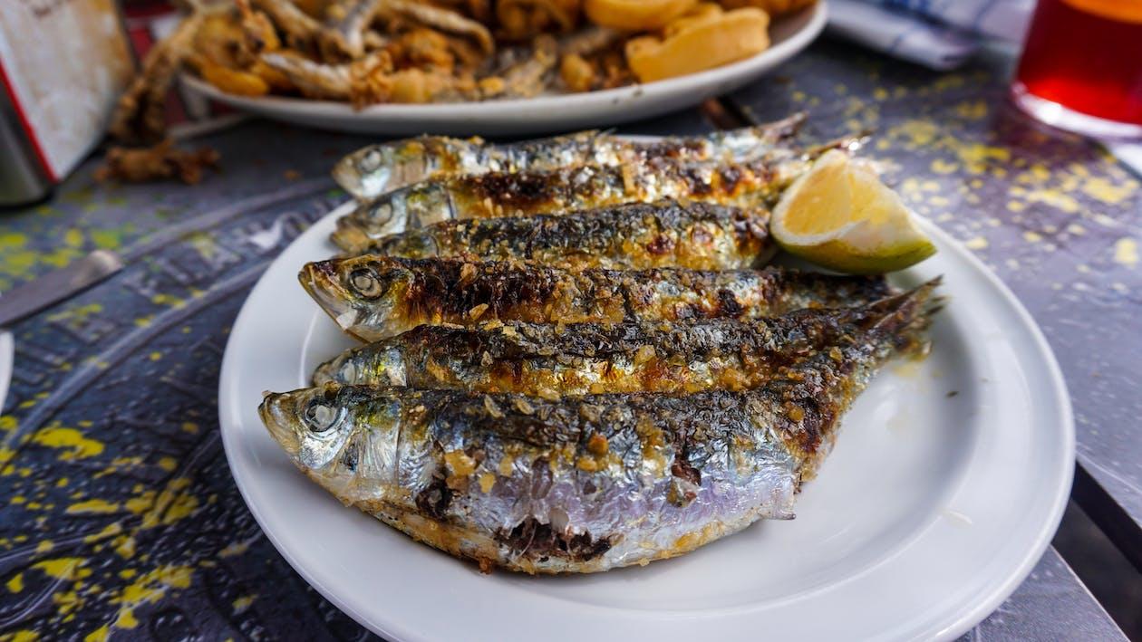 Gratis lagerfoto af fisk, fisk og skaldyr, grillet