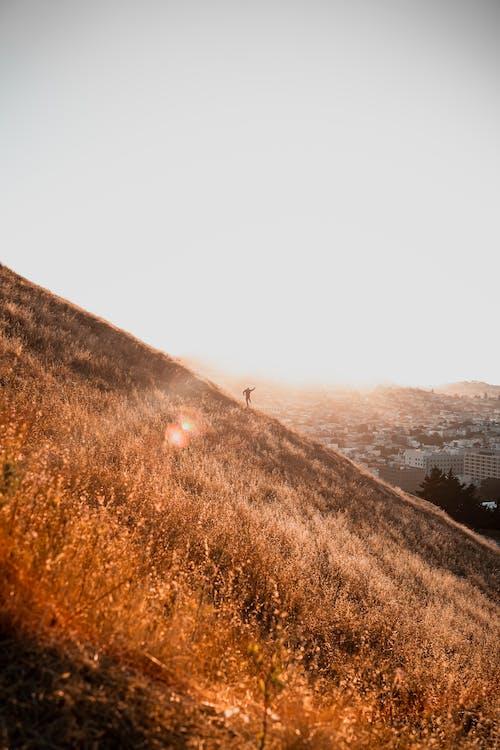 Základová fotografie zdarma na téma android tapety, bratr, cestování, fotka ve skoku