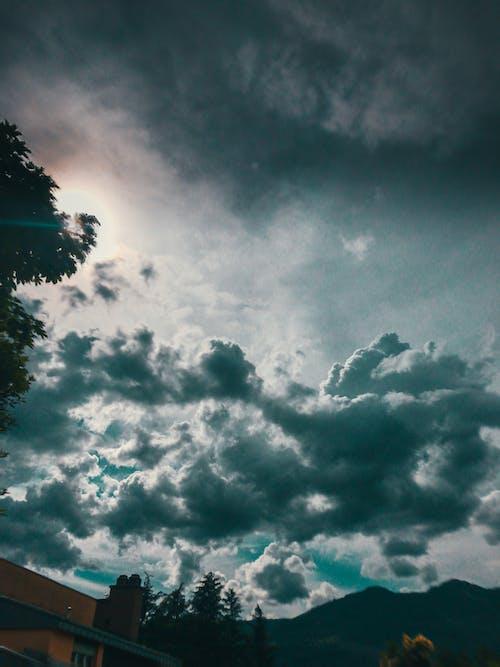 光, 光線, 原本, 夏天 的 免费素材图片