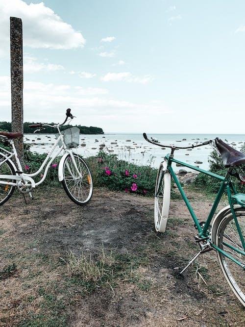 Základová fotografie zdarma na téma aktivita, cestování, denní světlo, dobrodružství