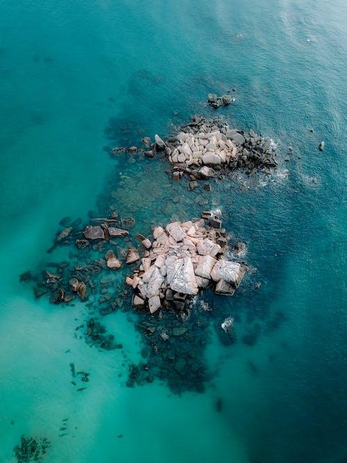 Immagine gratuita di acqua, acque azzurre, azzurro, barriera corallina