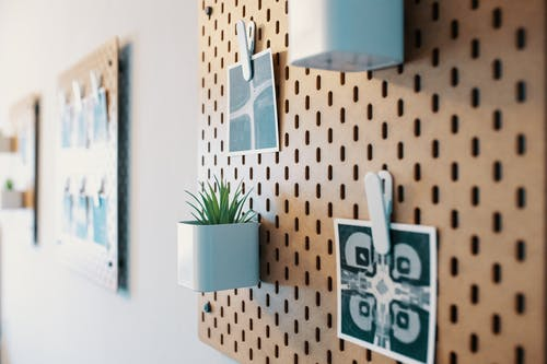 Various photos and decorative potted houseplants arranged on stylish wooden board hanging on wall