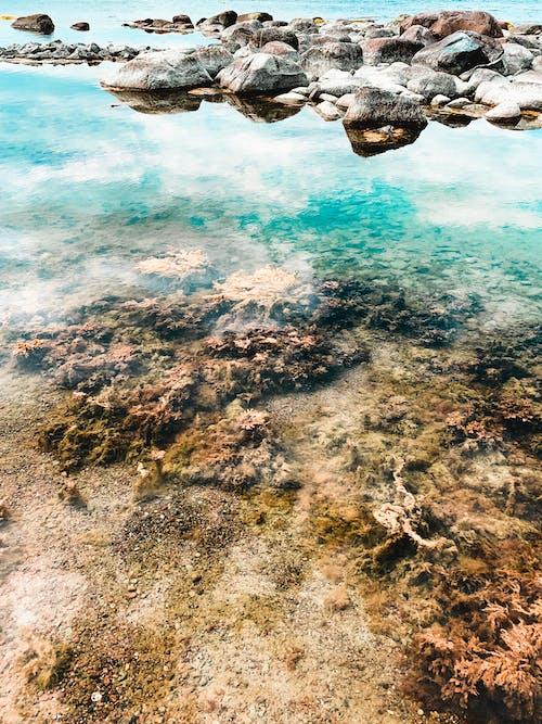 Základová fotografie zdarma na téma cestování, dovolená, kámen, krajina