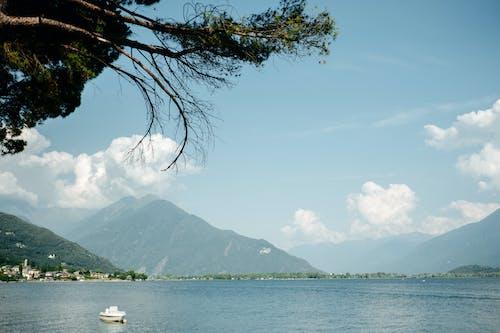 ağaç, como, dağ, gökyüzü içeren Ücretsiz stok fotoğraf