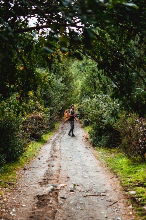 2 Men Walking on Pathway Between Green Trees