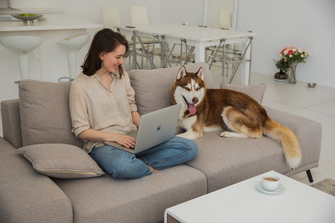 Woman in Gray Long Sleeve Shirt Sitting on Gray Couch Using Macbook