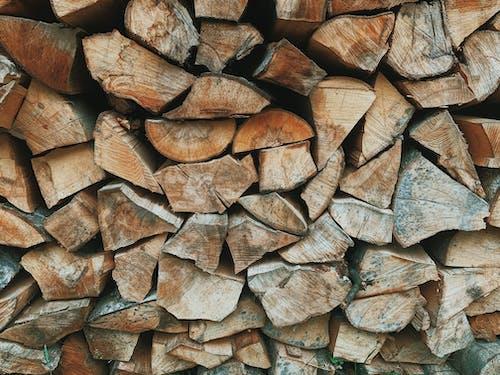 Stack of wood logs on backyard