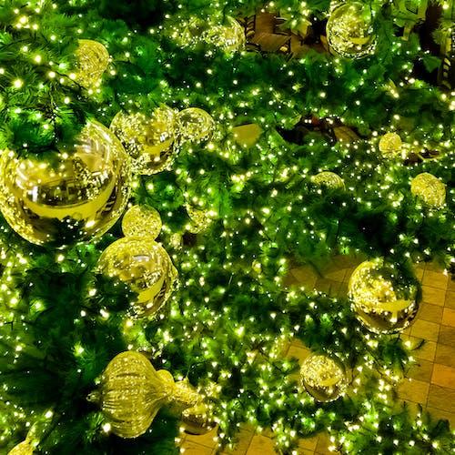 Free stock photo of christmas, christmas balls, christmas tree