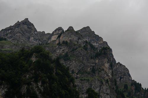 Gratis lagerfoto af berge, schweiz