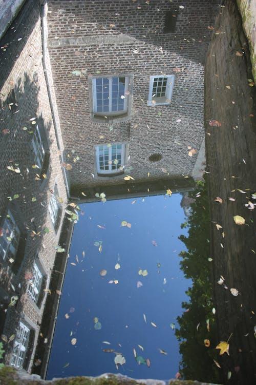 Foto stok gratis air, Arsitektur, daun daun, refleks