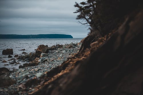 Photo of Rocky Shore Near Body of Water