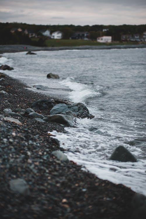Gratis arkivbilde med bølger, hav, havkyst, havside