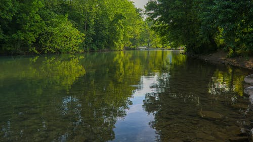 Free stock photo of calm, creek, golden hour, reflection