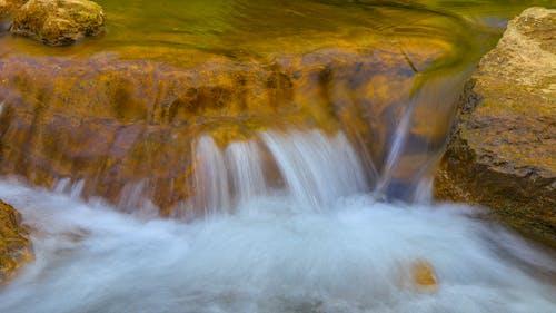 Free stock photo of creek, golden, long exposure, moss