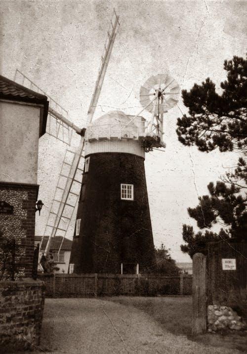 Foto d'estoc gratuïta de antic, arquitectura, art, blanc i negre