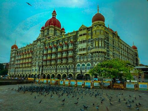Free stock photo of taj hotel mumbai
