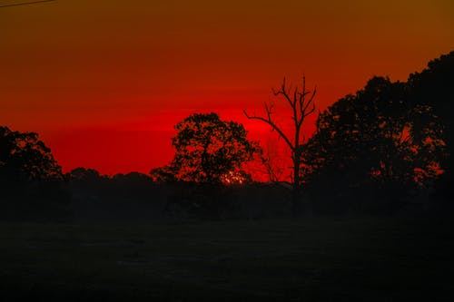 Free stock photo of golden hour, hayfield, orange, red
