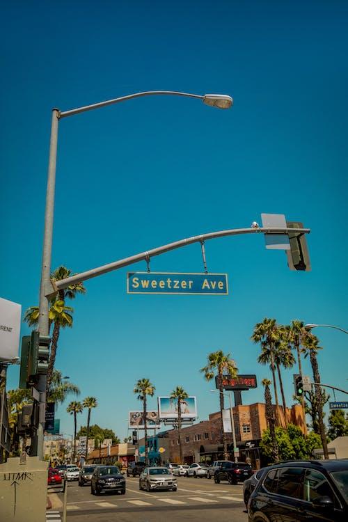 コンテンポラリー, シティ, ダウンタウン, どうろひょうしきの無料の写真素材