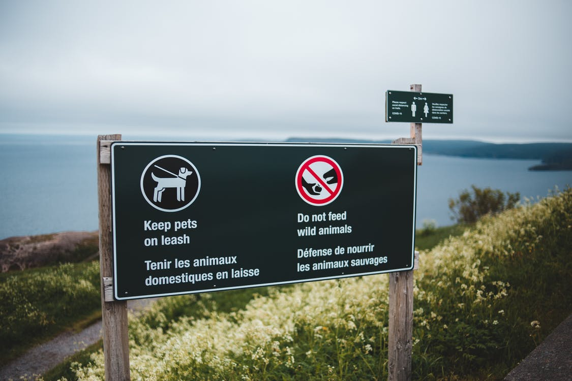 Photo of Signpost