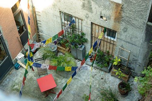 Kostenloses Stock Foto zu party, sommer, terrasse