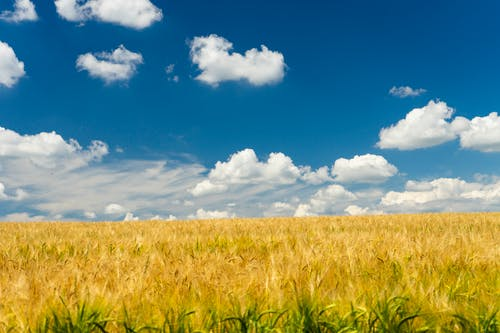 Free stock photo of beautiful sky, blue, blue sky
