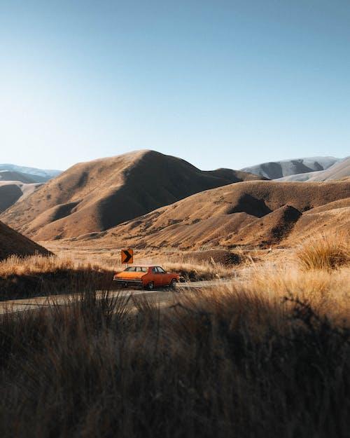 Immagine gratuita di alba, arancia, arancione