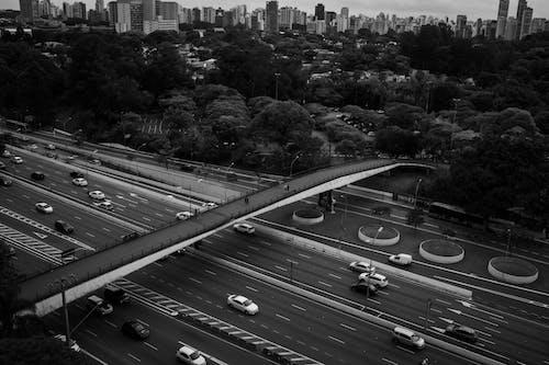 Cars driving on asphalt road in big city