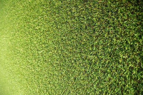 Kostnadsfri bild av abstrakt, bakgrund, detalj, golv