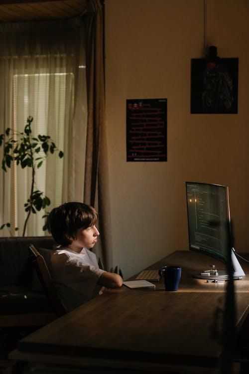 Gratis stockfoto met coder, codeur, computer, computerhacker