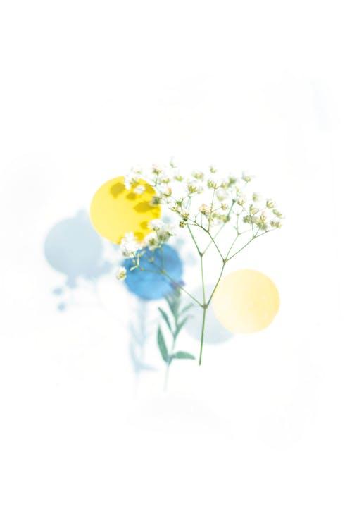 Kostnadsfri bild av abstrakt, bakgrund, blå