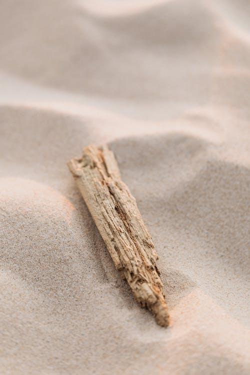 Gratis arkivbilde med bakgrunnsbilde, nærbilde, sand