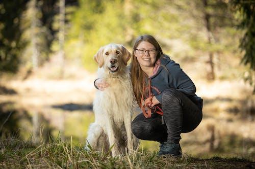 Free stock photo of animal, dog, friends, girl
