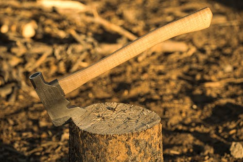 Gratis lagerfoto af dybde, hak, hakket træ, håndtag