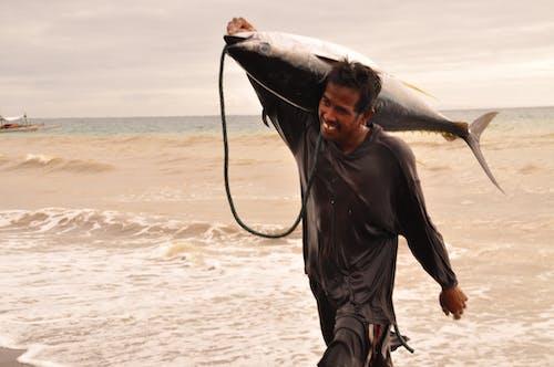 Free stock photo of fisherman, fishing, tuna, tuna catch