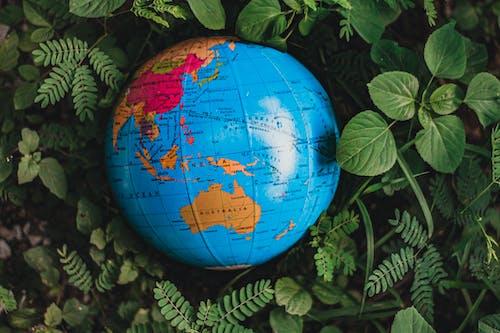 Fotos de stock gratuitas de Australia, cartografía, conocimiento, continente