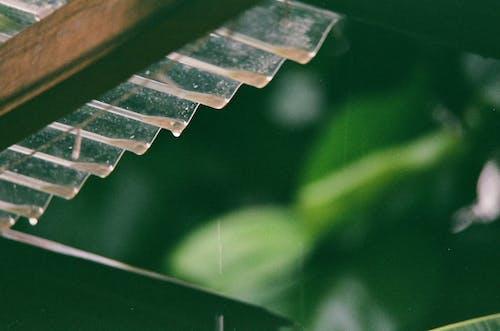 Ingyenes stockfotó 35 mm-es film, eső, filmfotózás, sötét témában