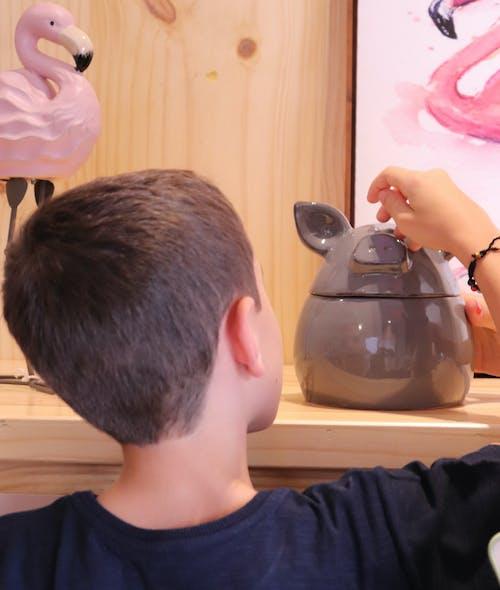 Free stock photo of brinquedo das crianças, criança, decoração, flamingo