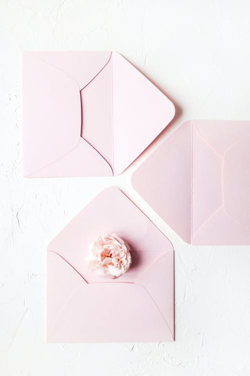 Delicate flower on pink envelope